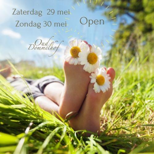 Kopie van Insta opening terras-1.jpg